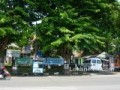 Puskesmas Srondol – Setiabudi Semarang